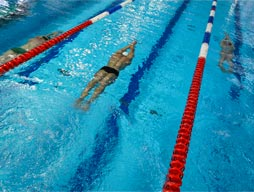 9th November - Swimming Carnival Years 4 to 6